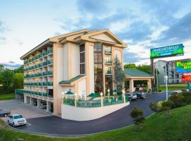 Pigeon River Inn, hotel in Pigeon Forge