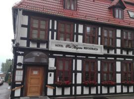 Hotel pod Muzami, hotel in Kamień Pomorski