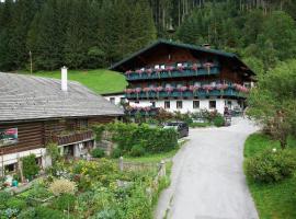 Appartement Ferienhof Ortnergut, hotel in Eben im Pongau