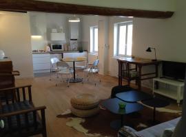 Mini Loft, pet-friendly hotel in Avignon