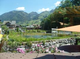 Vista Resort Hotel, hotel in Zweisimmen