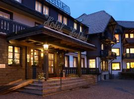 Hotel Hochfirst, hotel near Titisee-Neustadt Spa, Lenzkirch