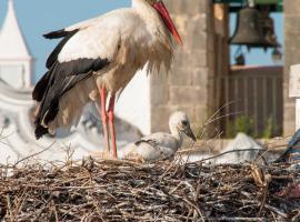 Stork Hostel, hotel near Culatra Island, Olhão