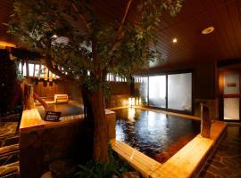 Dormy Inn Toyama Natural Hot Spring, hotel in Toyama