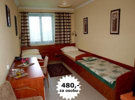 Hotel Relax u Drsů, hotel en Tábor