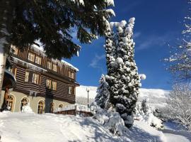 Alpský Hotel – hotel w Szpindlerowym Młynie