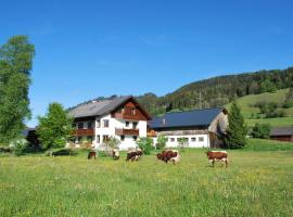 Hinkerhof, hotel with pools in Schladming