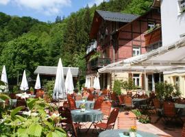 Hotel Forsthaus, Hotel in Bad Schandau