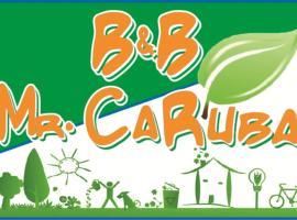 B&B MrCaruba, B&B in Stintino