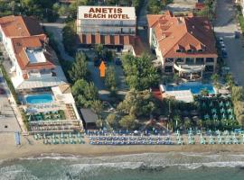 Anetis Hotel, hotel in Tsilivi