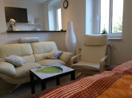Ferienwohnung im Paulusviertel II, apartment in Halle an der Saale