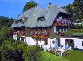 Pension Daheim, homestay in Todtnauberg