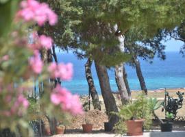Pineta Sul Mare, hotel a Castelluzzo
