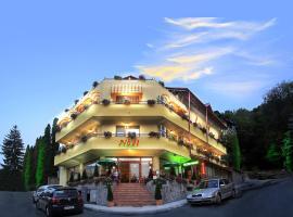 Pensiunea Noel, hotel din Băile Olăneşti