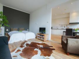 Apartment Havenstraat, hotel near TU Delft, Delft
