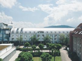 StayInn Hostel und Gästehaus, hostel in Freiburg im Breisgau