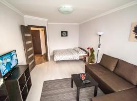 Vnukovo Airport Apartments, pet-friendly hotel in Vnukovo