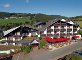 Sporthotel Zum Hohen Eimberg, hotel in Willingen