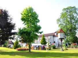 Hotel Gerbe, hotel in Friedrichshafen
