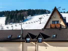 Ski&Spa Zieleniec, hotel near Zieleniec Ski Resort, Zieleniec