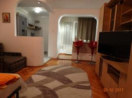 Try the Central Felling, apartament din Timișoara