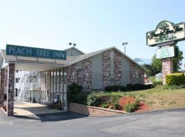 Peach Tree Inn, motel in Branson