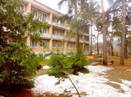 Hotel Matveevskiy, hotel in Odintsovo