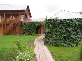 Mini Hotel Ksenia, hotel with pools in Aya