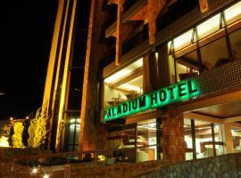 Serra Negra Paladium Hotel, hotel em Serra Negra