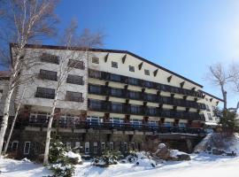 Hotel Kodama, hotel in Yamanouchi