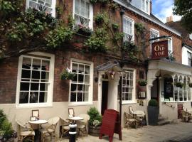 The Old Vine, hotel near Bombay Sapphire Distillery, Winchester