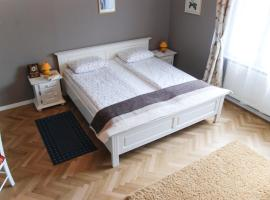 Apartment House Timisoara, apartament din Timișoara