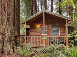 Emerald Forest Cabins, lodge in Trinidad