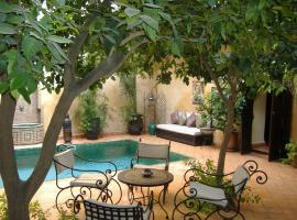Riad Du Petit Prince, hotel in Marrakesh