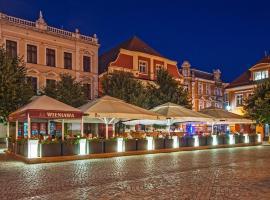 Wieniawa, hotel in Leszno