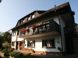 Ferienwohnung am Wehlenbach, budget hotel in Hallenberg