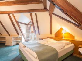 Hostellerie Schwendi, hotel near Le Haut Koenigsbourg, Kientzheim
