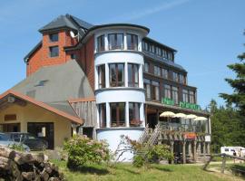 Les Terrasses du Lac Blanc, hotel near Lac Blanc Ski School, Orbey