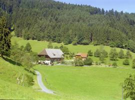 Blumbauernhof, farm stay in Gutach