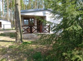 Domek letniskowy SZWED-POL, hotel near Bory Tucholskie National Park, Kujan