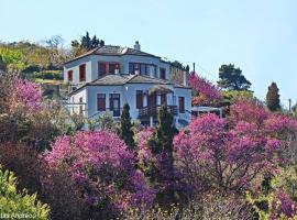 O Stolios, hotell nära Skopelos hamn, Skopelos stad