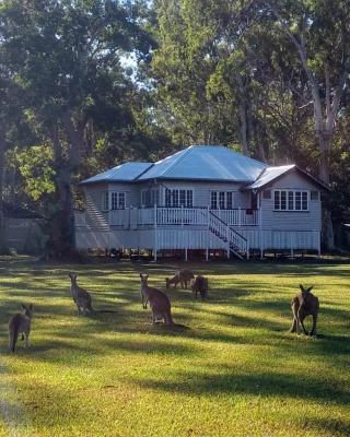 Lake Weyba Noosa Lodge & Kangaroos