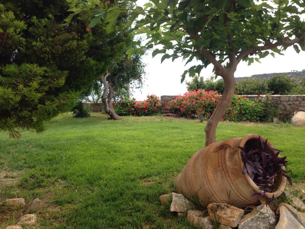 Ospiti di Kioni Villas con animali domestici