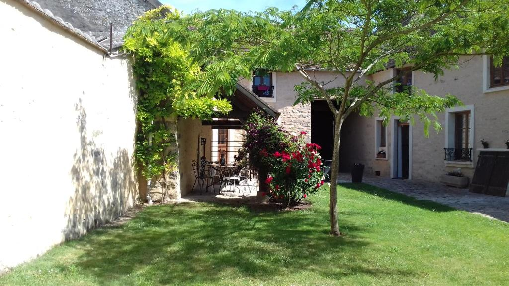 A garden outside Ilot Bonheur