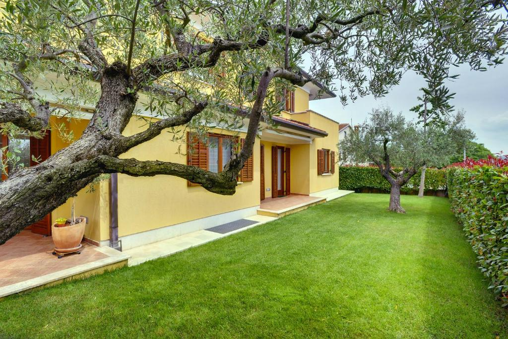 A garden outside Villa NiNa Rovinj B&B