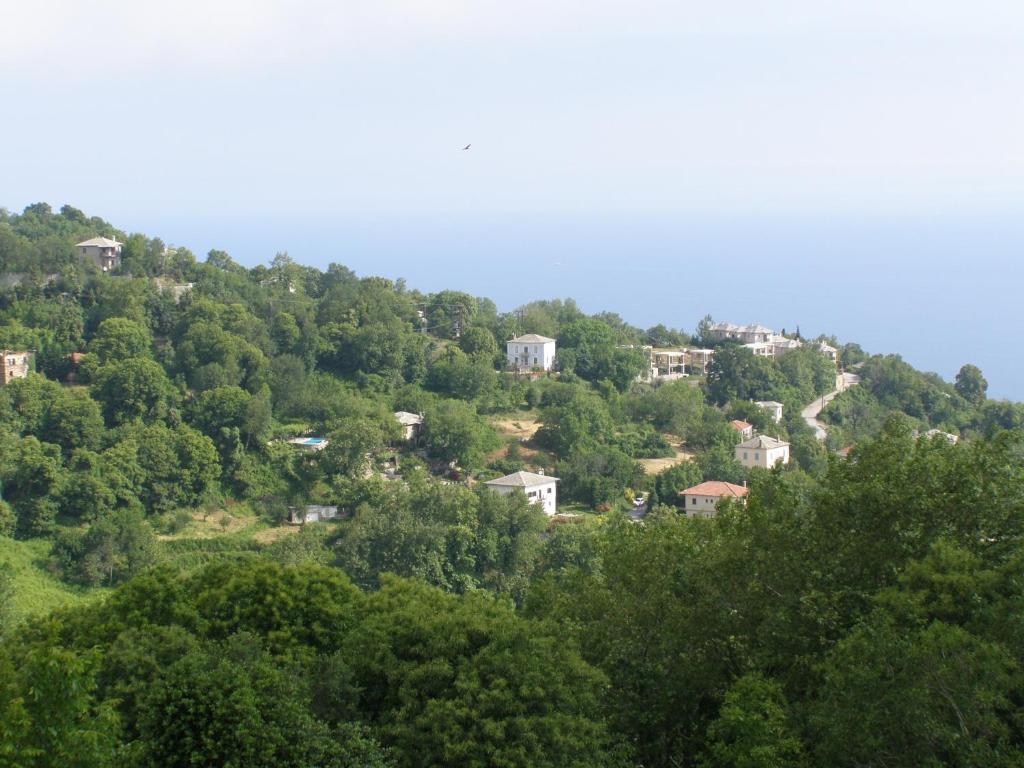 Άποψη από ψηλά του Hotel Tsagarada