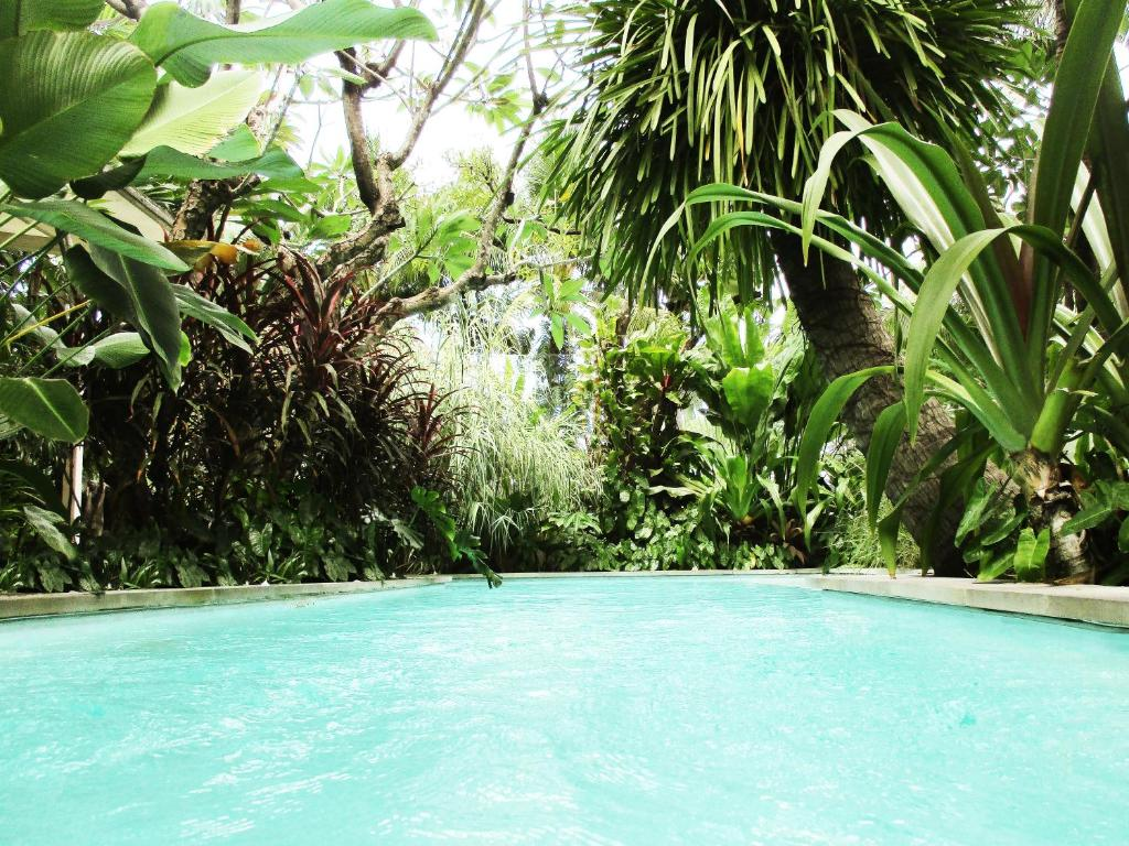 The swimming pool at or close to Refillnow! Hostel