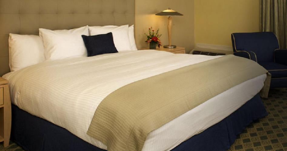 Holiday Inn Express MILL VALLEY SAN FRANCISCO AREA - Laterooms