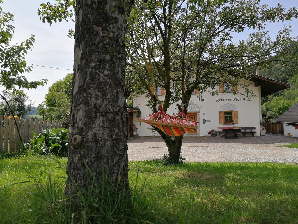 A garden outside Feldererhof