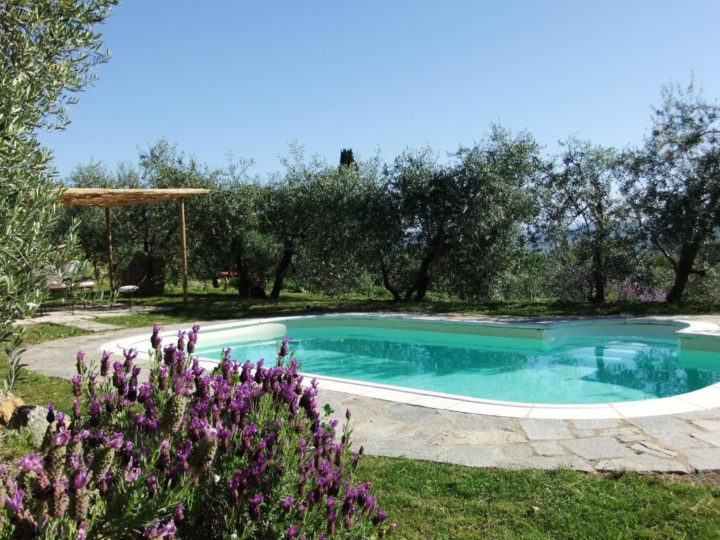 The swimming pool at or near Agriturismo Il Castagnolino
